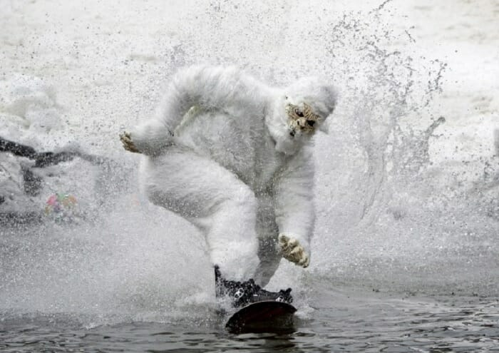 snowboarding gorillas are an essential on page optimisation tool