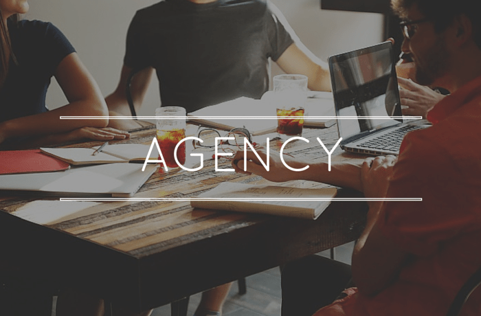 Agencies for Ecommerce management