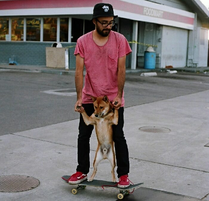 Bearded Tandem Skateboarding with Dogs