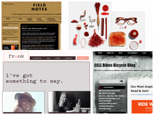 Niche Ecommerce Blog Examples