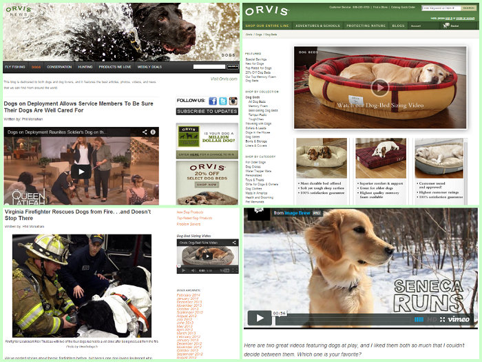 Orvis Dogs Niche Blog Examples